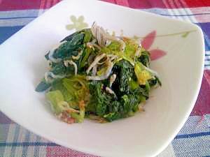 鉄分・カルシウムたっぷり!小松菜のおかかジャコ和え