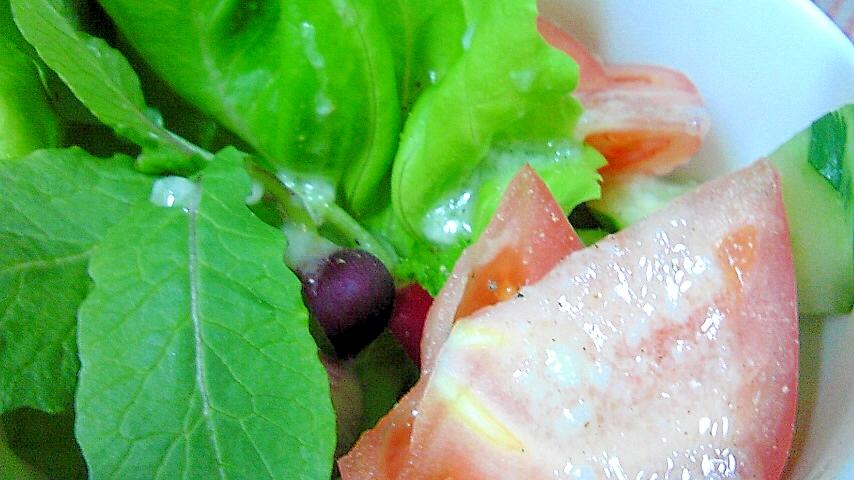 彩りラディッシュのサラダ