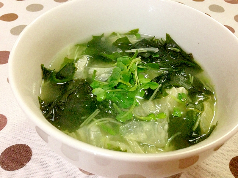 【ダイエットメニュー】ワカメと白菜スープ