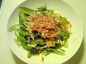 キャベツとピーマンの簡単サラダ!ドレッシングいらず