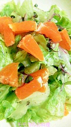 ミカンとお野菜のアマニ油サラダ