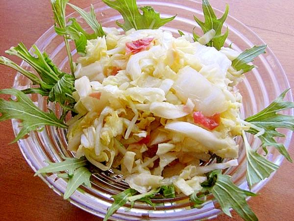 すぐ食べる漬物サラダ♪(キャベツ&白菜&水菜)