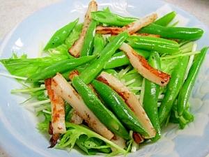 インゲンと竹輪のサラダ