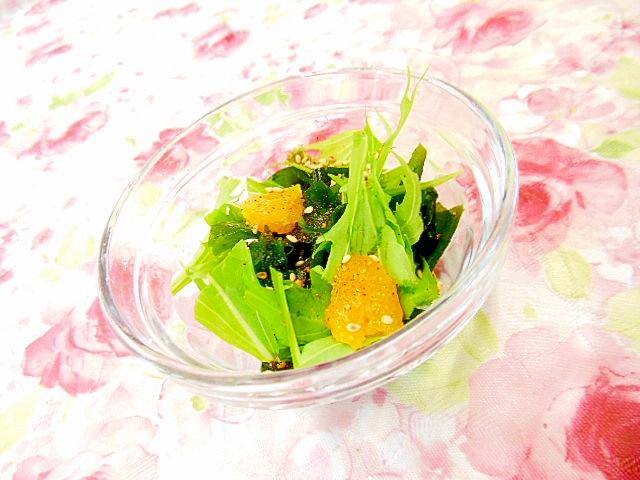 ワカメと水菜と蜜柑のサラダ