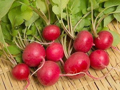 サラダ紅かぶ