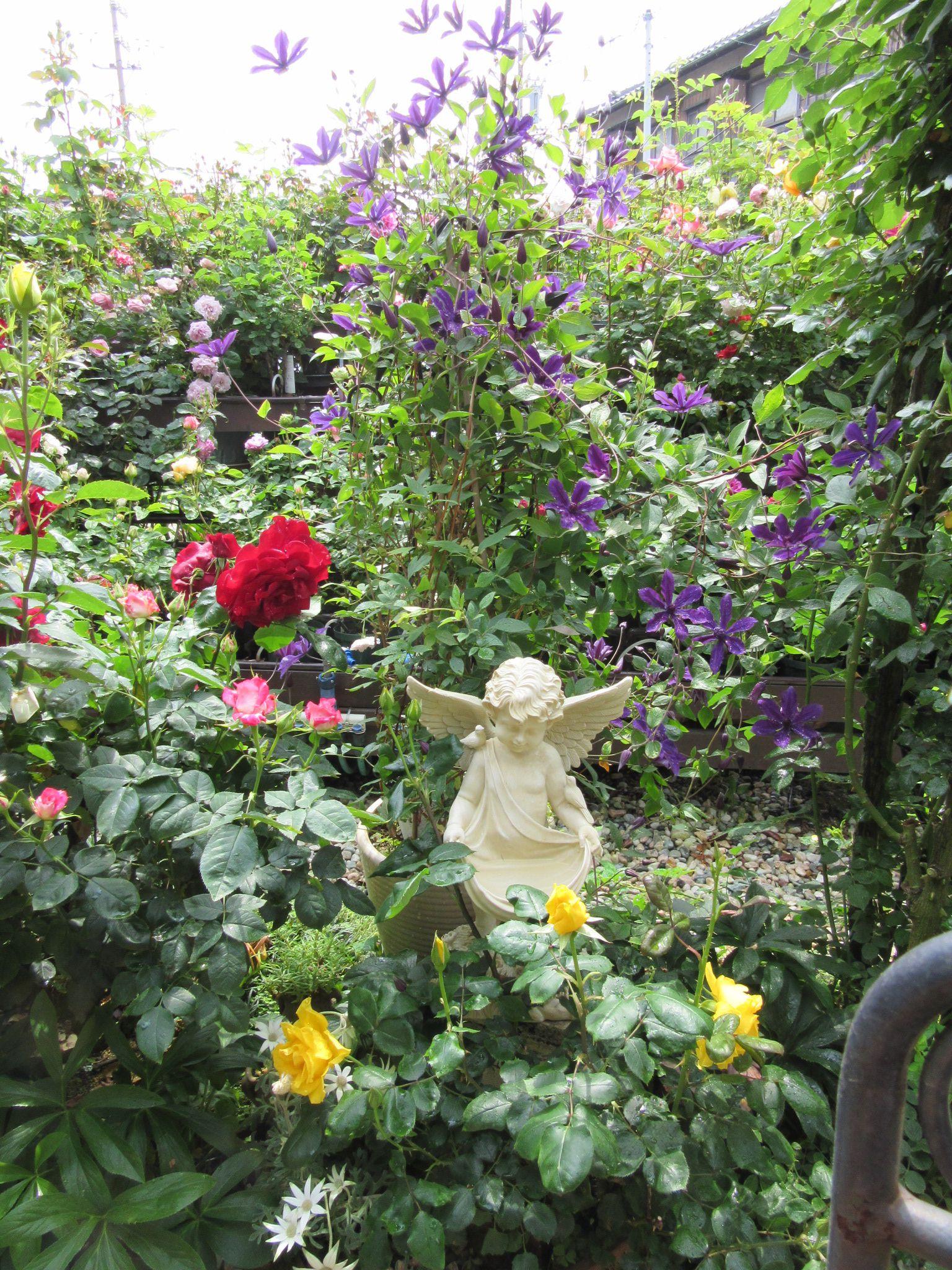ば 薔薇 あ ば の 花園 の