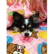 ★Mon★さんのプロフィール画像