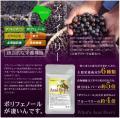 「アサイベリー 約3ヵ月分 【seedcoms_D】3D 送料無料」の商品レビュー詳細を見る