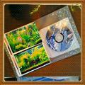 「ハクバ ビュートプラス Lサイズ56枚 小花 ブルー ABP-L56KBL(1冊入)【ハクバ(HAKUBA)】」の商品レビュー詳細を見る