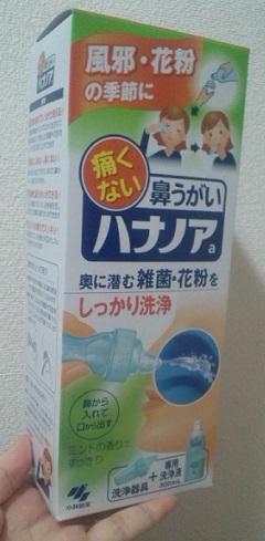 洗浄液 自作 ハナノア