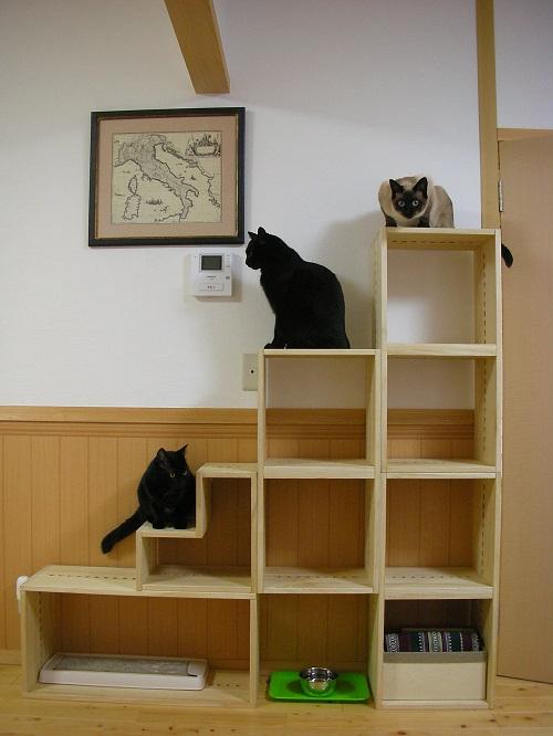 【キャットタワーがわりに。】 3匹の猫のための購入です。どんなセッティングにするか考えるのが楽しかった!(シュミレーションシートが役に立ちました)軽くてとても扱いが楽でした。棚部分がたくさんあるので、人間も利用させてもらいます。【子供部屋 無垢 木製 収納 ラック キューブ カラーボックス 本棚 絵本 おもちゃ 収納 図鑑 大型本】