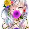 白雪姫14さん