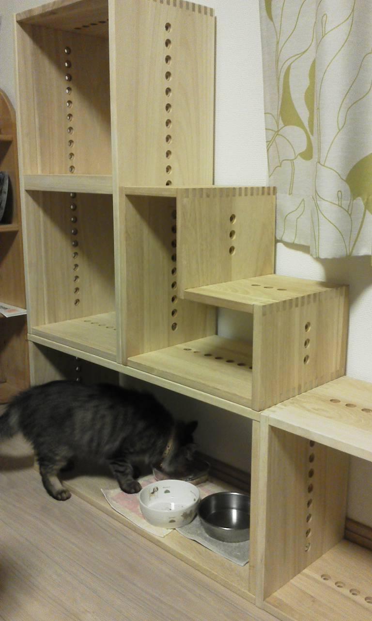 【気に入っています】 猫を飼うようになり、腰高窓に乗りたがるので階段状になるように組み合わせています。板の厚さも十分ありしっかりした作りです。高さもA4がちょうど収まるくらいで使い勝手も良いです。組み合わせ次第で形が自由に作れるので、他の場所にも置きたくなりました。【子供部屋 無垢 木製 収納 ラック キューブ カラーボックス 本棚 絵本 おもちゃ 収納 図鑑 大型本】