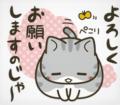 「matsukiyo リビング&食卓用クリーナー 20枚」の商品レビュー詳細を見る