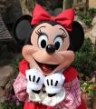 minnie..xoxoさん