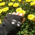 「【特別送料無料!】UV手袋 / 絶対焼かない!可愛いアームカバーで紫外線対策♪ レディース アームカバー ロング ショート 涼しい UV 紫外線 日焼け 【メール便可05】◆zootie(ズーティー):フェイバリット UVアームカバー」の商品レビュー詳細を見る