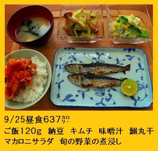 2015_0925_120456-IMGP5170.JPG