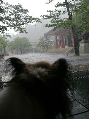 2012京都夏3−59.JPG