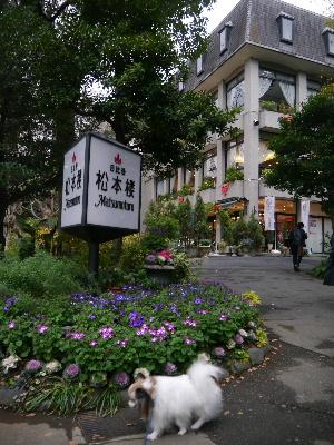 2012銀座6.JPG