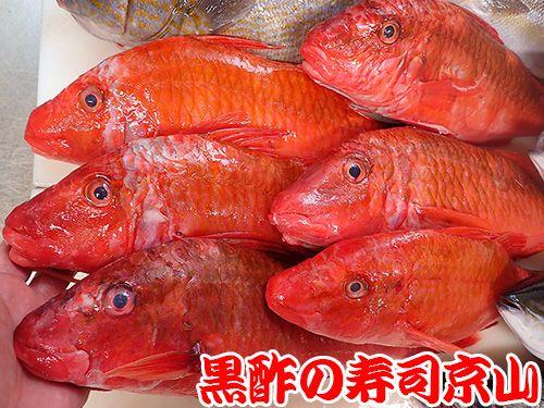 港区 三田 美味しい魚 宅配寿司