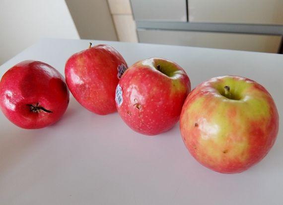 コストコ りんご 林檎 リンゴ ピンクレディー 797円 アメリカ ワシントン Stemilt apple