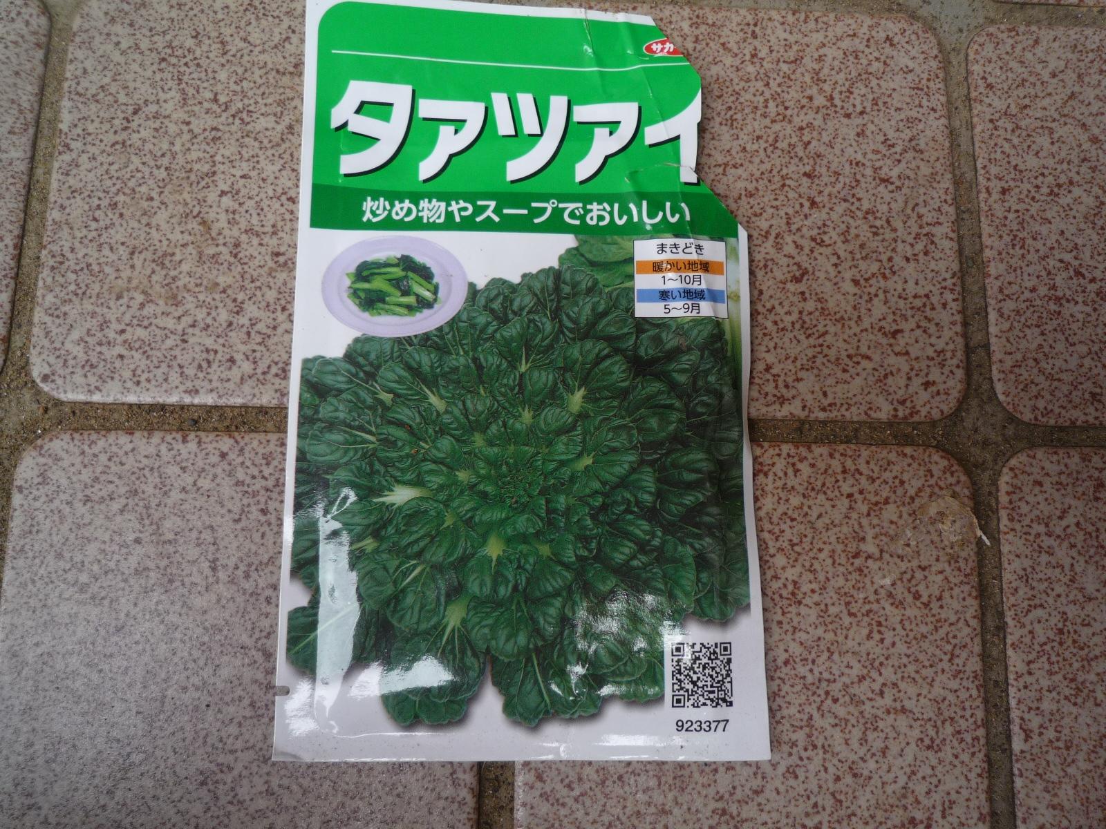タァサイ種.JPG
