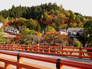 001中橋から.JPG