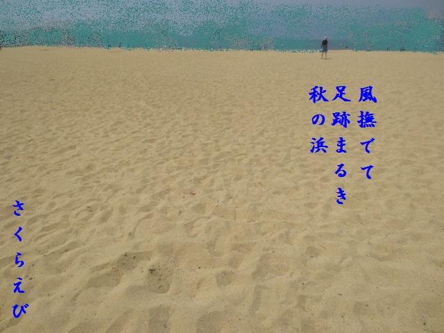 IMG_0488blog42.jpg