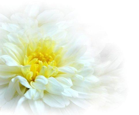 HPブログ用画像 626.jpg