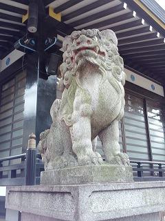 須賀狛2.jpg