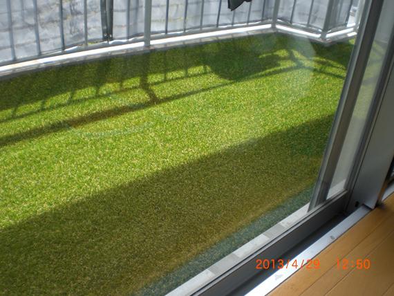 人工芝の施工。室内から見える景色。