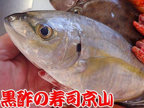 寿司 出前 中央区 日本橋箱崎町