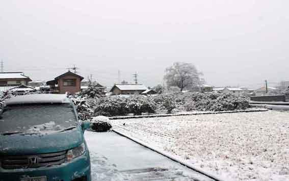 雪景色2014.2.14♪