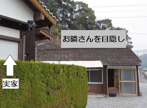 2015_0306_115512-IMGP3793 - コピー.JPG