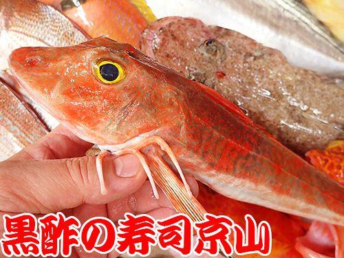 寿司の種類 宅配寿司 ホウボウ