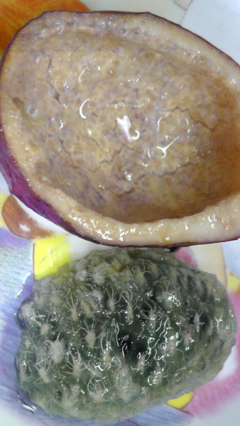 種の周りのゼリー状のものを食べる