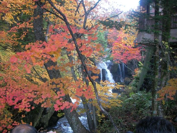 2012-10-21 20121021 015b.jpg