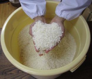 塩と糀を揉み解す4.jpg