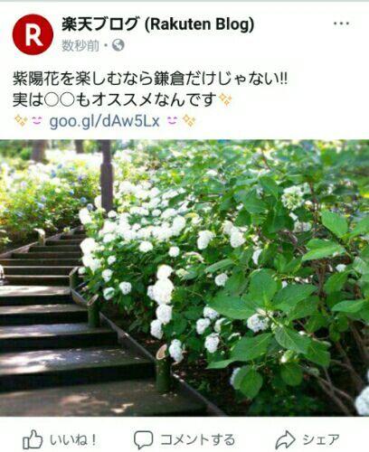 rblog-20180616173310-00.jpg