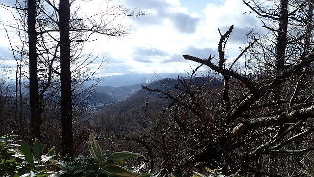 PB261734 11:18藤野の山.jpg