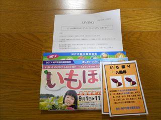 DSCN7505_R.JPG