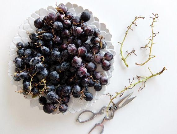 コストコ ブラックシードレス グレープ 1398円 Adora Black Seedless Grapes  ブログ