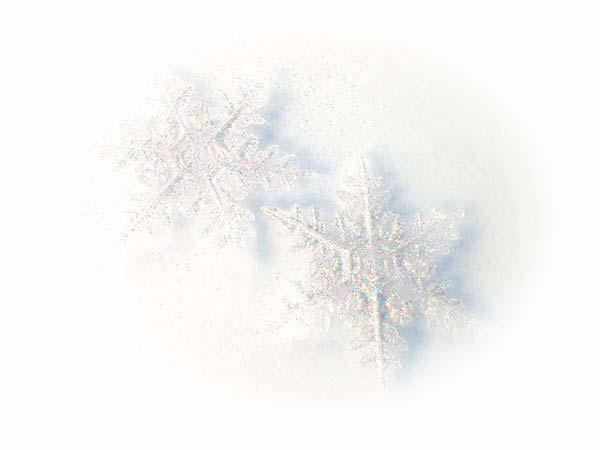 HPブログ用画像 1182.jpg