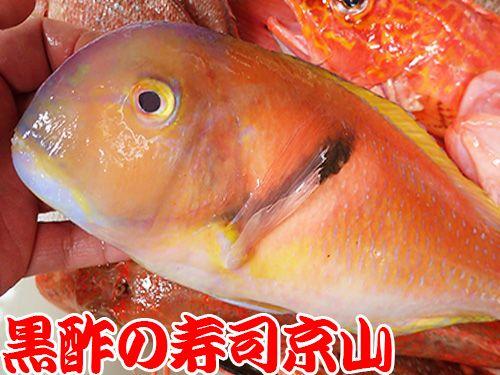 寿司の種類 宅配寿司 イラ