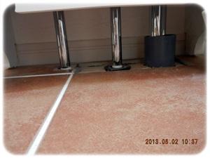 2回洗面台の下が….JPG