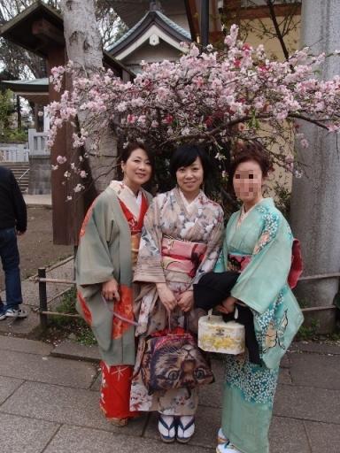 外桜3.JPG