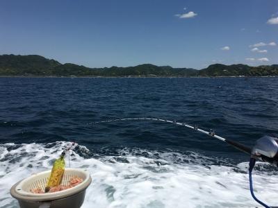 170604保田沖へ