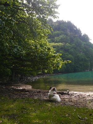 2012日光夏5.JPG