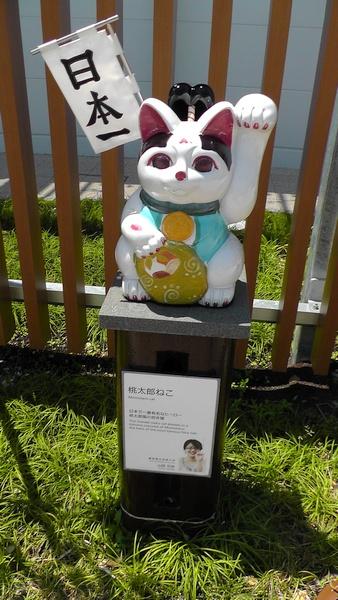 桃太郎ねこ 招き猫 招き猫ストリート@イオンモール常滑