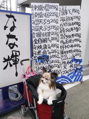 2012伊豆5月3-3.JPG